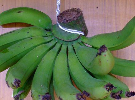 070502 台湾バナナ.JPG
