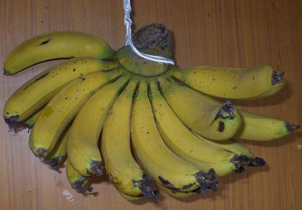 070506台湾バナナ5−1.JPG