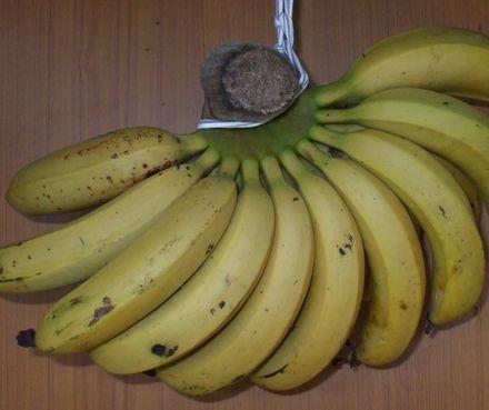 070506台湾バナナ5−2.JPG