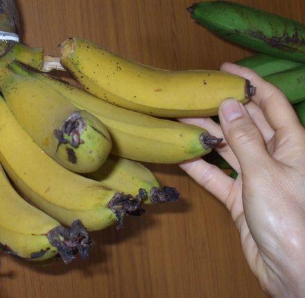 070506台湾バナナ5−3.JPG