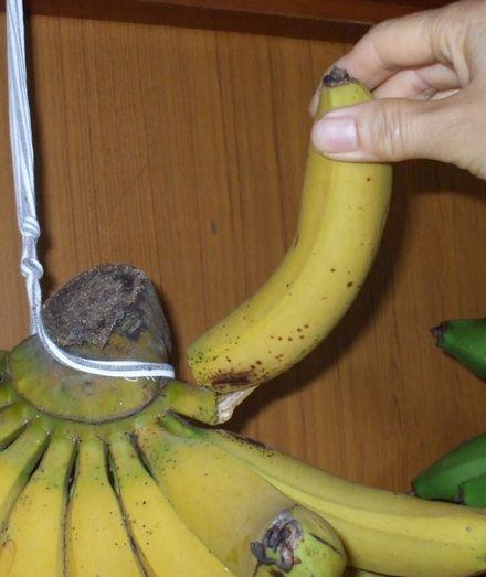 070506台湾バナナ5−4.JPG